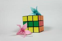 02_Flores_escala