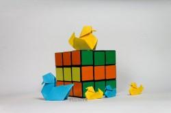 05_Patos escala