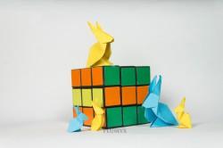 06_Conejos escala