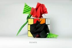 09_Rosas conjunto