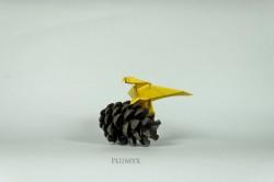 13_Aguila sostenida