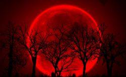 eclipse_luna__3