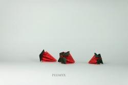 30_Fresas grupo