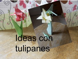 Ideas con tulipanes