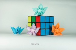 31_Flor pentaedro_escala