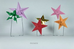 045_Estrellas_grupo
