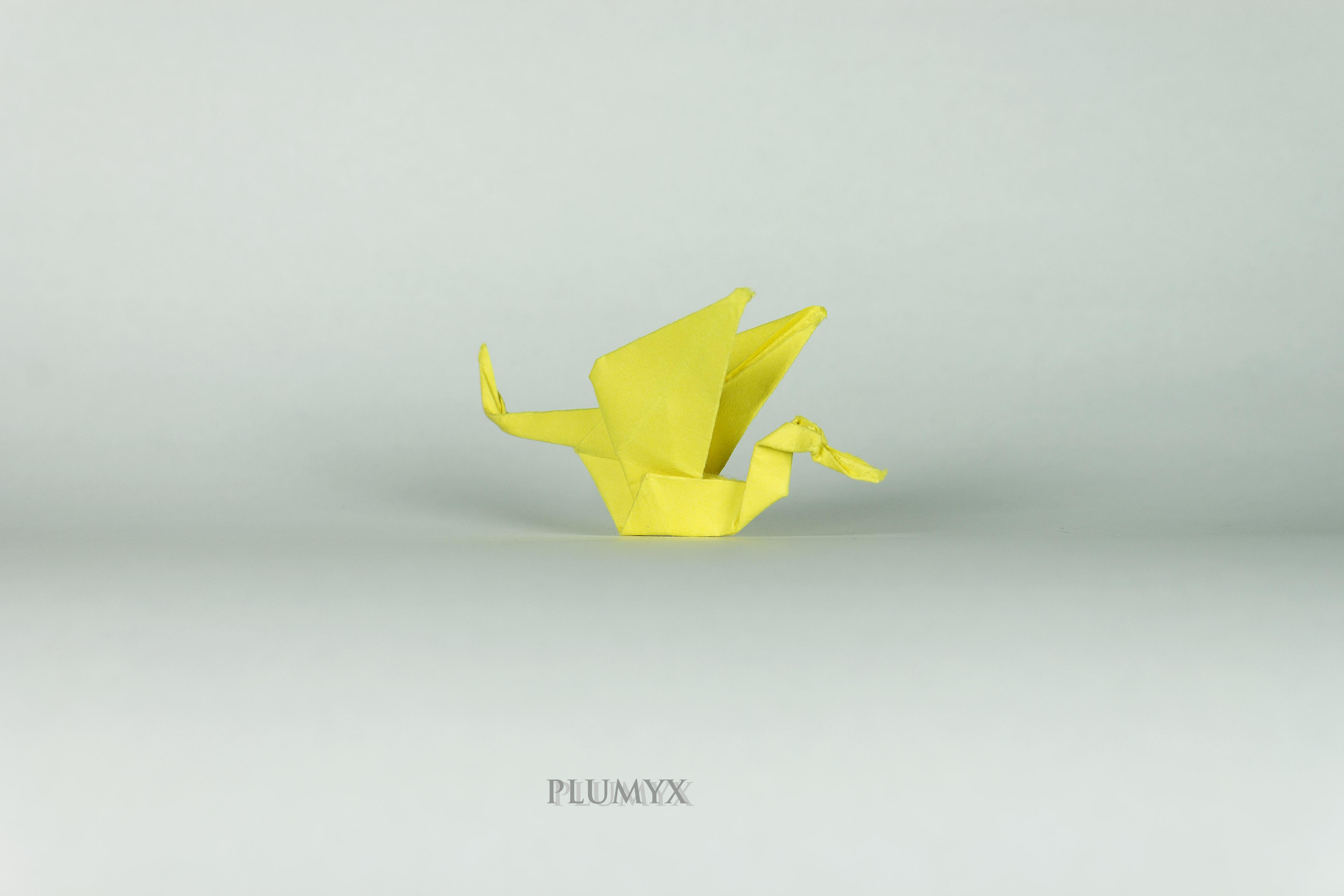 041_Cigüeñas voladoras