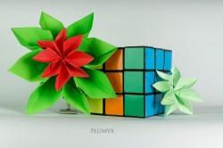 065_Flor Navidad_escala