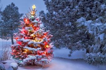 arbolito-de-navidad-con-luces-de-colores-en-paisaje-de-invierno-escenarios-navideños