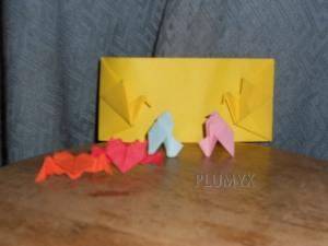 pack palomas