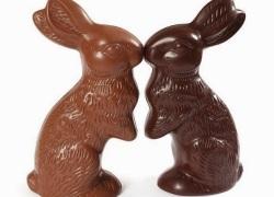 Conejos-de-pascua