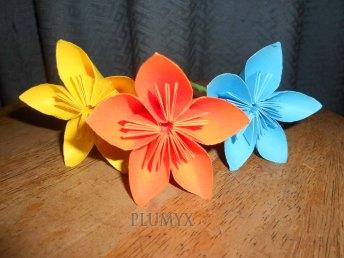 flores_estrella