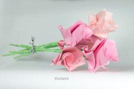 109_ramos-flores-sv_rosas_