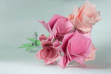 109_ramos-flores-sv_rosas_cenital