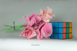 109_ramos-flores-sv_rosas_escala