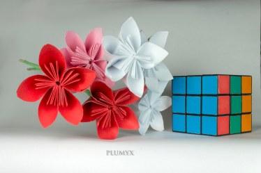 109_ramos-flores-sv_tipo-1_escala_red