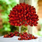 http://blog.higarnovias.com/2016/04/29/centros-de-mesa-con-frutas/