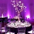 http://www.haciendarijo.mx/blog-julio-02-2/2015/7/9/violeta-el-color-de-las-bodas-2016