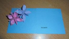 flor estrella tarjeta