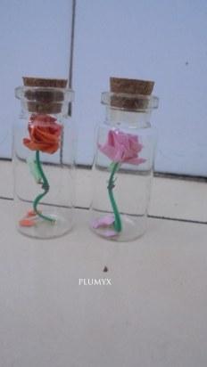 rosas-botes