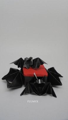 caja murciélagos