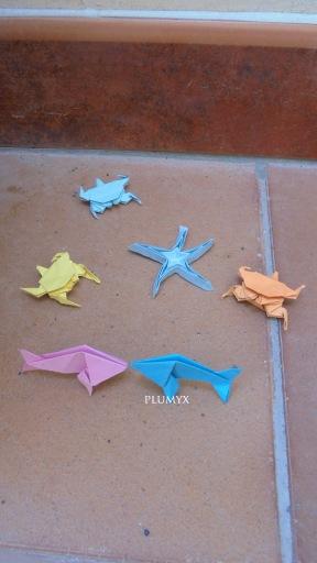 playa origami